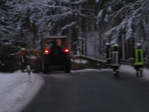 04.12.2010 Baum über Fahrbahn