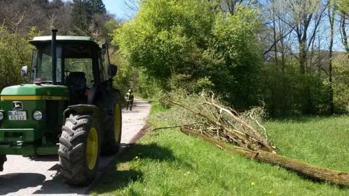 06.05.2017 Baum über Fahrbahn